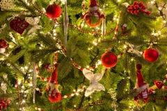 Marionetas de Papá Noel en árbol de navidad Fotos de archivo libres de regalías