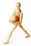 marionette яичка Стоковые Фото