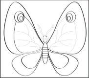 Mariposa. Fotos de archivo libres de regalías