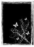 Mariposa libre illustration