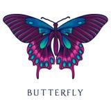 Mariposa abstracta Foto de archivo