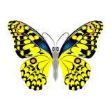 Mariposa amarilla hermosa brillante Ilustración del vector aislada