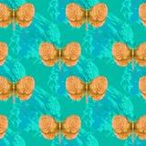 Mariposa anaranjada Imagenes de archivo
