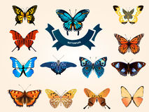 Mariposa azul brillante que vuela Imágenes de archivo libres de regalías