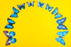 Mariposa azul en fondo amarillo Foto de archivo libre de regalías