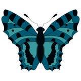 Mariposa azul Ilustración del vector Drenaje a mano Fotografía de archivo libre de regalías
