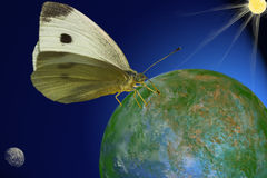 Mariposa cósmica Fotos de archivo