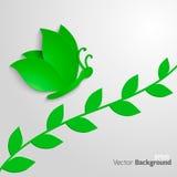Mariposa de Eco Fotografía de archivo