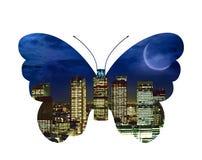 Mariposa de la ciudad stock de ilustración