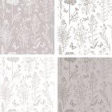 Mariposa de la flora de la primavera del gris de acero stock de ilustración