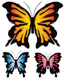 Mariposa de las mariposas Imagen de archivo