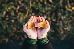Mariposa de madera Imagenes de archivo