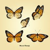 Mariposa de monarca stock de ilustración