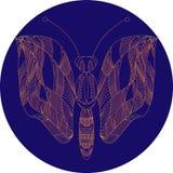 Mariposa de neón Foto de archivo libre de regalías