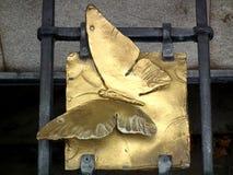 Mariposa de oro en la rejilla imagen de archivo
