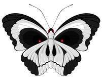 Mariposa del cráneo ilustración del vector