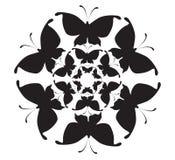 Mariposa del modelo Imagen de archivo