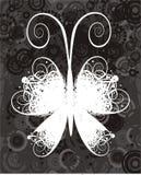 Mariposa del vector Fotografía de archivo libre de regalías