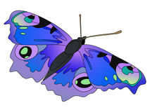 Mariposa del vector. Fotos de archivo