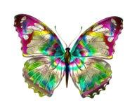 Mariposa Design Imagenes de archivo