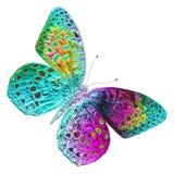 Mariposa Design libre illustration