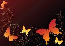 Mariposa en el negro. Imágenes de archivo libres de regalías