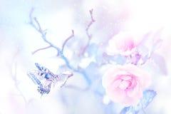 Mariposa en la nieve en rosas rosadas en un jardín de hadas Imagen artística de la Navidad fotos de archivo libres de regalías