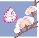 Mariposa en la rama Imágenes de archivo libres de regalías