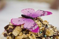 Mariposa en la torta Fotografía de archivo