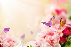 Mariposa en las flores Fotografía de archivo