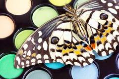 Mariposa en los sombreadores de ojos profesionales del maquillaje Imagen de archivo