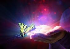 Mariposa en manos ilustración del vector