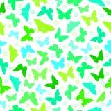 Mariposa en un fondo blanco Imágenes de archivo libres de regalías