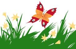 Mariposa entre la flor libre illustration