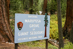 Mariposa Grove Sign. The sign at the entrance of Mariposa Grove Stock Images