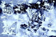 Mariposa Grunge - fondo Stock de ilustración
