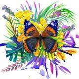Mariposa, hojas tropicales y flor exótica Foto de archivo