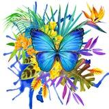 Mariposa, hojas tropicales y flor exótica
