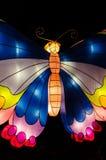 Mariposa iluminada imagen de archivo