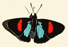 Mariposa negra Ilustración del Vector