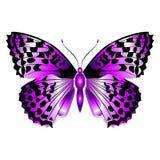 Mariposa púrpura hermosa brillante Ilustración del vector aislada