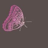 Mariposa para la decoración  Imagenes de archivo