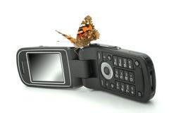 Mariposa que se sienta en un teléfono móvil Fotografía de archivo libre de regalías