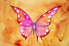 Mariposa rosada con el fondo anaranjado Fotos de archivo