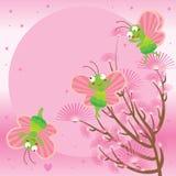 Mariposa rosada de la luna Fotografía de archivo libre de regalías