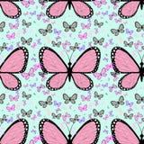 Mariposa rosada grande rodeada por el pequeño butterflie multicolor Foto de archivo libre de regalías