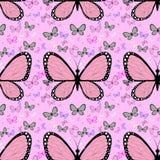 Mariposa rosada grande rodeada por las pequeñas mariposas multicoloras Imagen de archivo libre de regalías