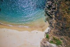 Mariposa secreta hermosa de la playa Estado turístico de Goa en la India foto de archivo