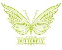 Mariposa verde. Foto de archivo
