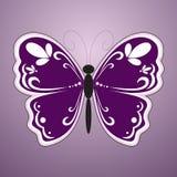 Mariposa violeta Foto de archivo libre de regalías